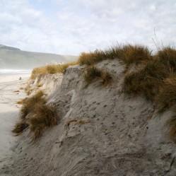 Scarp Erosion