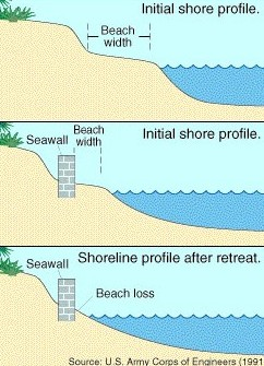 Effects of Sea Walls